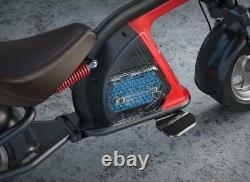 2000w Electric e Scooter 60v 150km Range 45km/h Speed Brushless EEC COC Citycoco