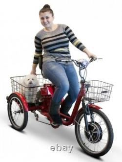 Adult Electric Tricycle Ebike Motorized Pedaling Scooter 3 Wheel Bicycle Cruiser
